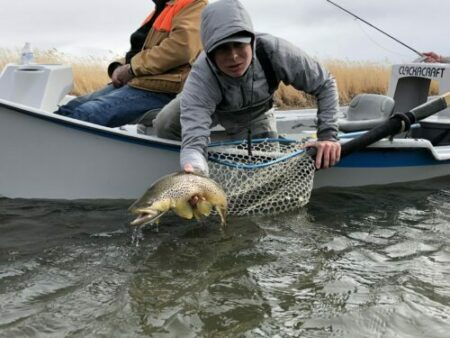 Grey Reef Fishing Report, Fly Fishing Info-Wyoming Anglers